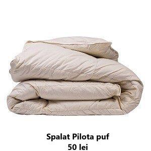 curatatorie haine botosani spalatorie haine spalat pilota puf